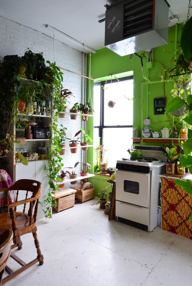 The plant-filled tea cozy and vertical swing garden in the kitchen. Photo by Nancy Mitchell @Apartment Therapy.