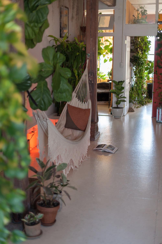 hammock-house-summer-rayne-oakes.jpg