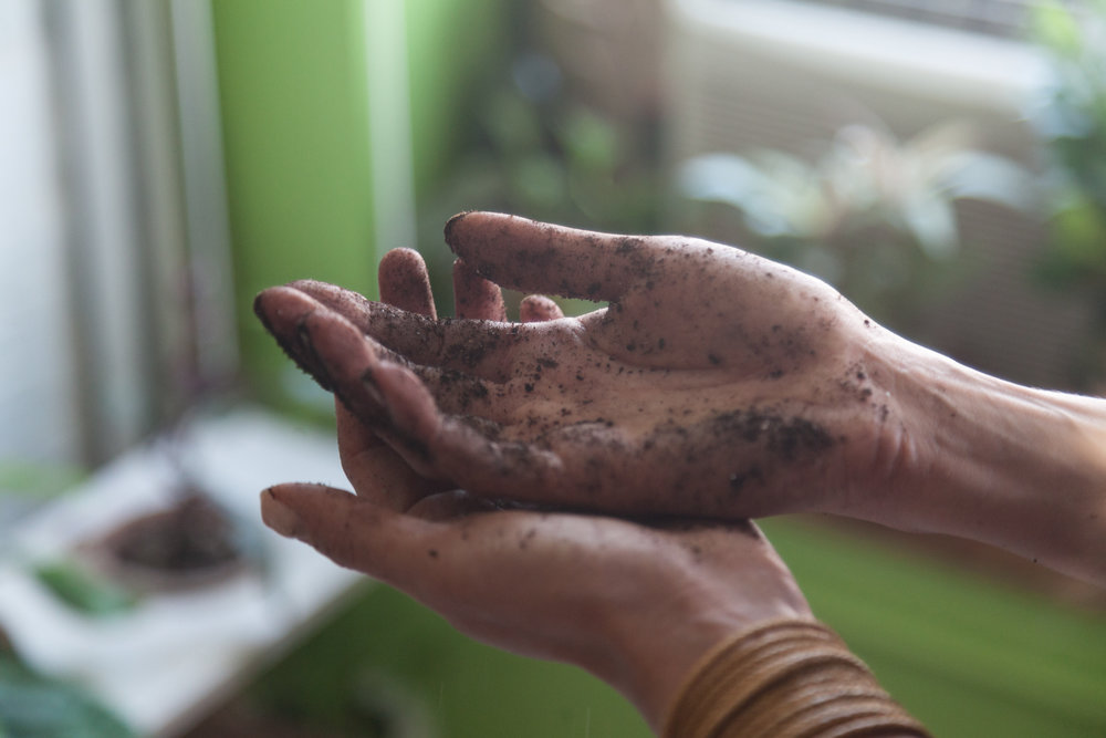 Repotting is a messy job. If I have them available, I'll often lay down newspaper while I'm repotting because getting your floor dirty is inevitable. And don't let me even get into your hands! Let's just say you'll always need to refresh your manicure.