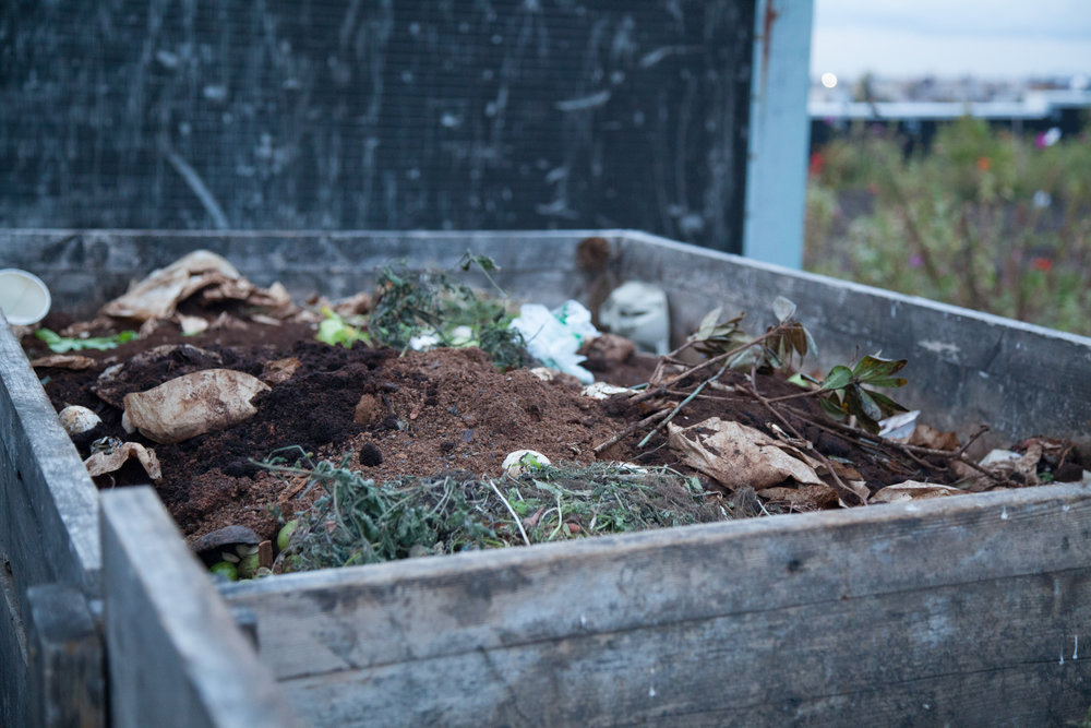 Composting is an important part of the farming process. Photo by Summer Rayne Oakes at Brooklyn Grange Rooftop Farm