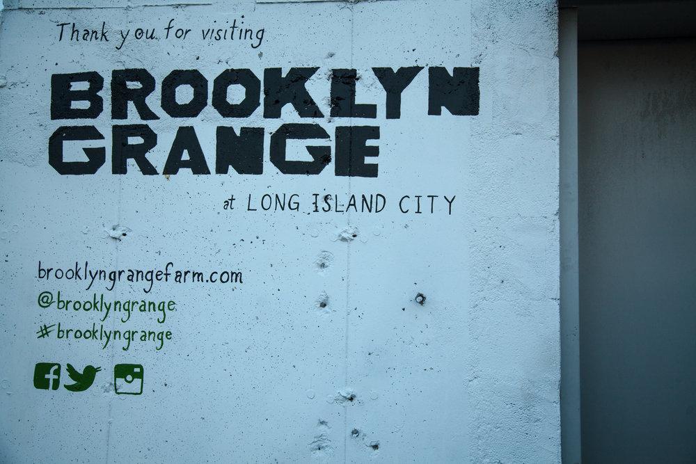 Brooklyn-Grange-Social.jpg