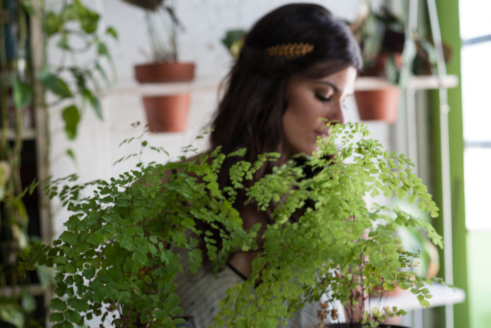 I've learned a lot from living with plants. You can say, in a way, that I've grown with them, as they've grown with me. Photo:  @homesteadbrooklyn