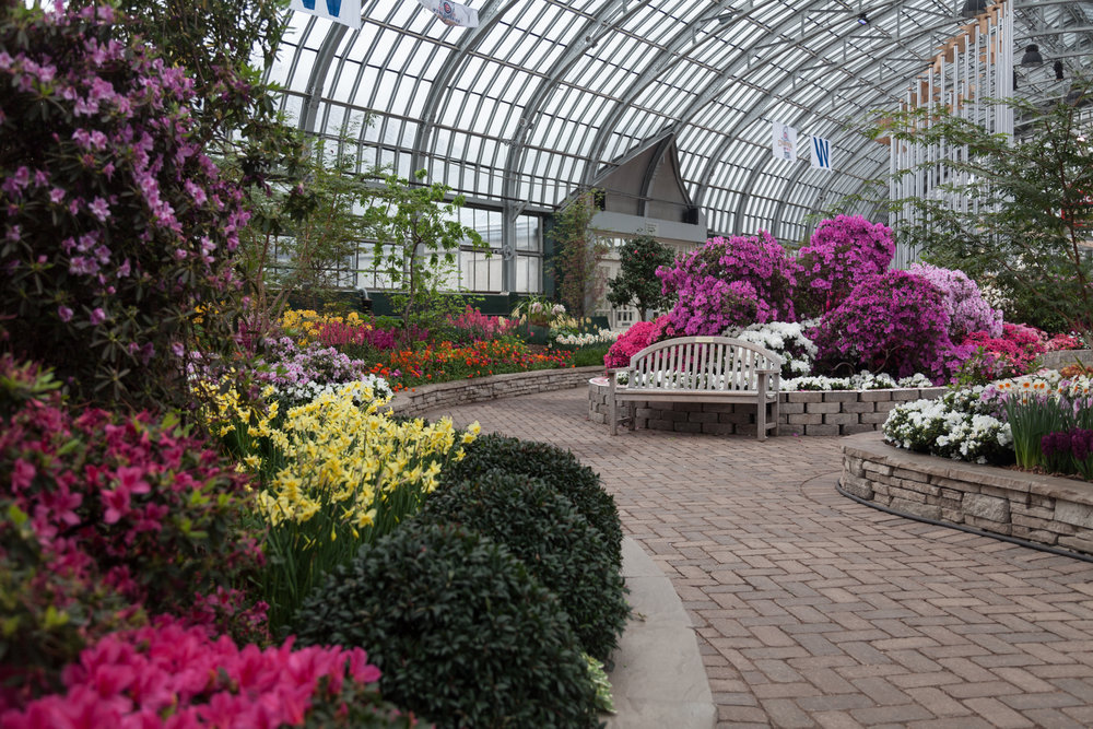 flower-room-garfield-park-conservatory.