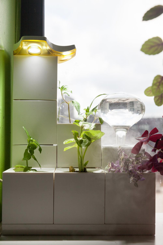 LeGrow-Smart-Garden-system.jpg