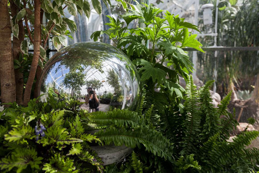 Plant-selfie-Volunteer-Park-Conservatory-Summer-Rayne-Oakes.jpg