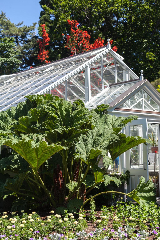 Volunteer-Park-Conservatory.jpg
