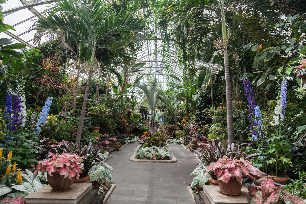 The grandeur of the main greenhouse