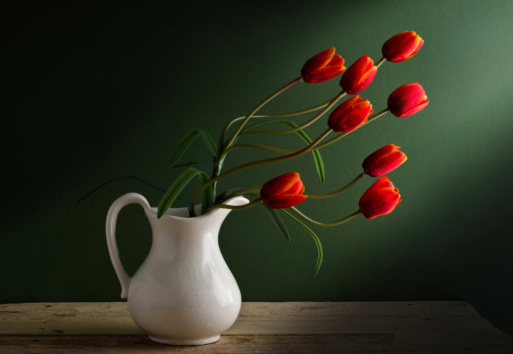 tulip-flower-homestead-brooklyn.jpg