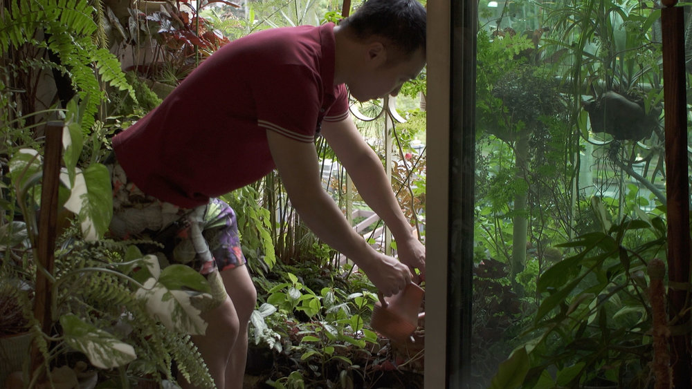 James uses a plastic long-necked watering can to water his plants individually.