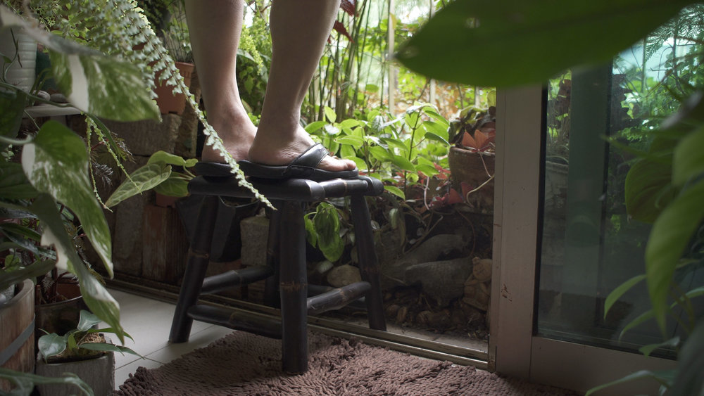 James Ip's watering stool. He waters his plants everyday before he goes to work.