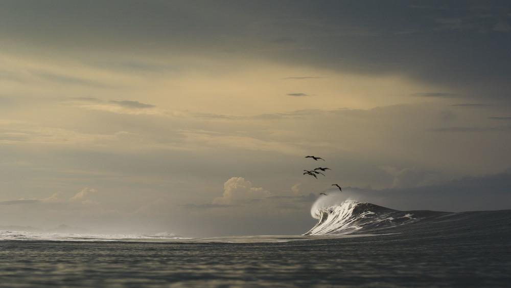 Mirando al sur los pelicanos migrando y las nubes que desde temprano entran en cuadro en esta lluviosa temporada.