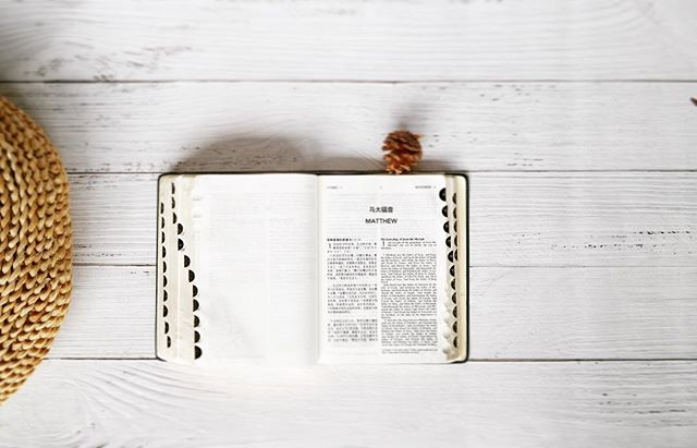 How important is studying the Bible really in our current day and age? That's the question of the night, 630p @calvaryboise. Bring a friend along. . . . . #youngadult #christian #worship #gathering #discipleship #Jesus #followers #boise #community #life #heart #bible #study