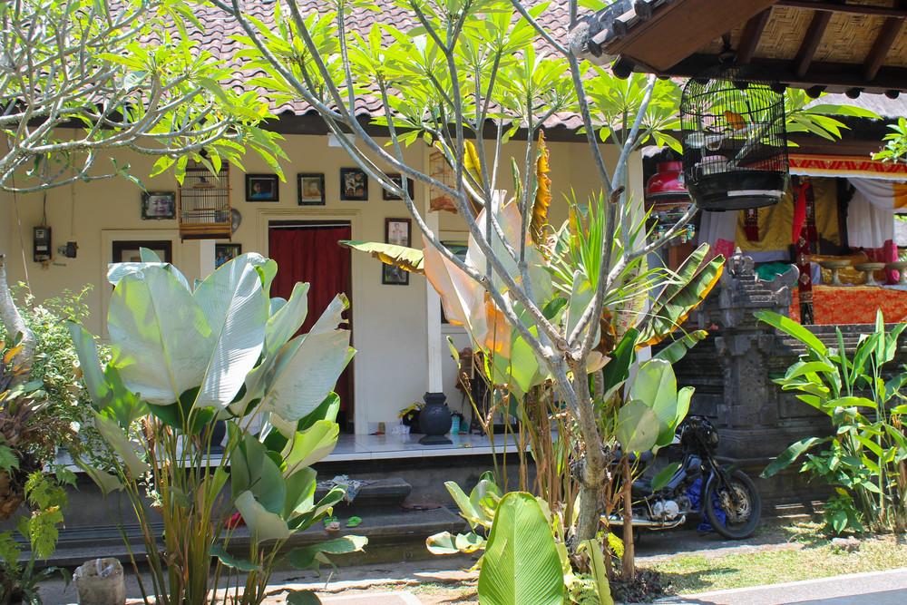 ubud-homestay-home
