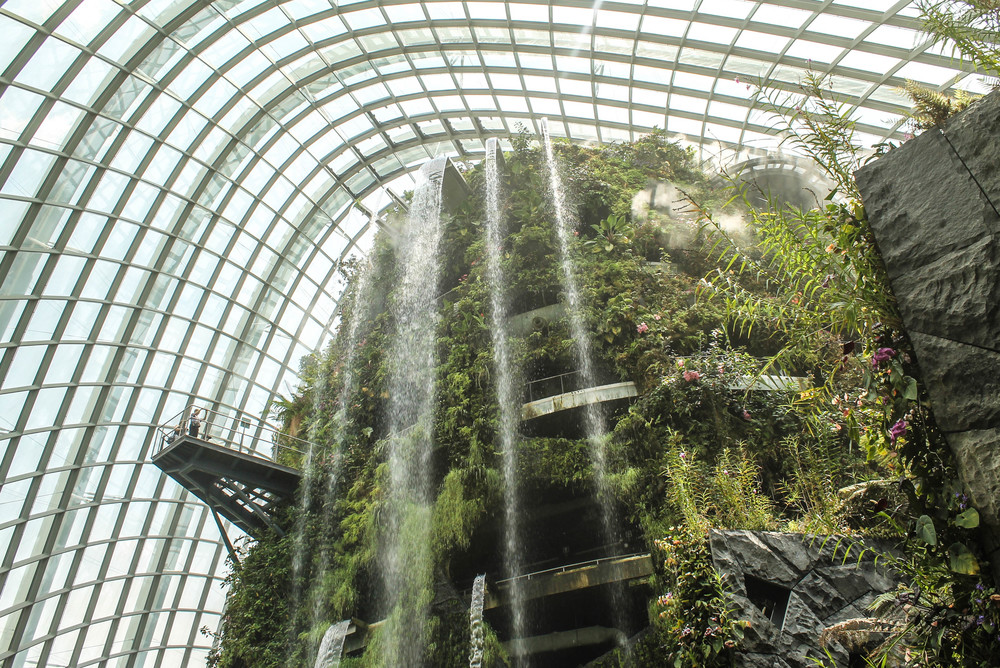 cloud-forest-singapore