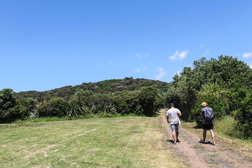 waiheke-hike