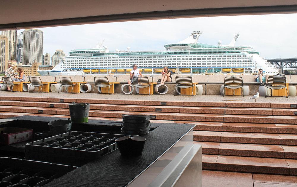 sydney-cruise-ship