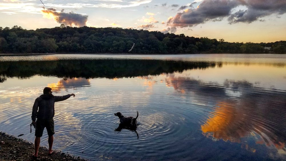 Dusk at Jamaica Pond with Basil.