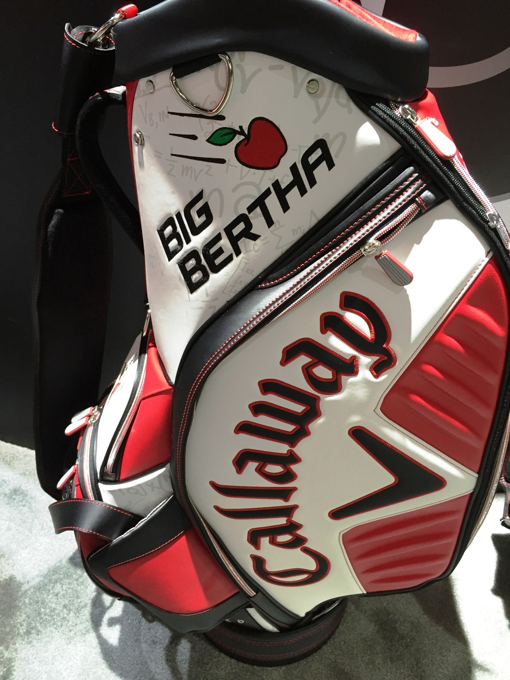 bertha bag.jpg