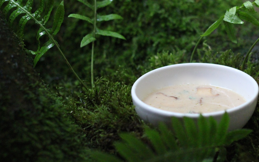 "A bowl of chanterelle soup nestled into a moss and fern ""forest.""  This is another option for how to use your freshly foraged (or dried) chanterelles.  Recipe at ThreadandWhisk.com."