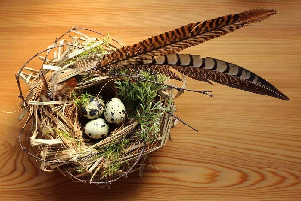 A handmade bird nest for Spring