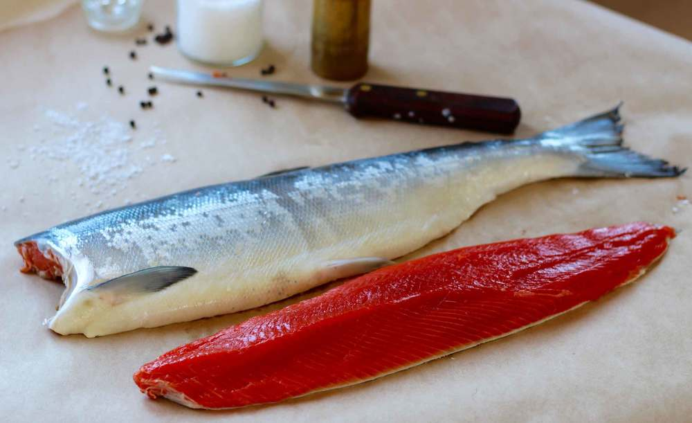 sockeye salmon, Thread & Whisk
