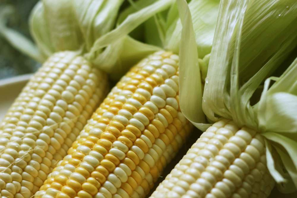 fresh corn, fresh corn polenta recipe from Thread & Whisk
