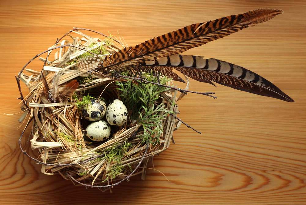 handmade natural bird nest