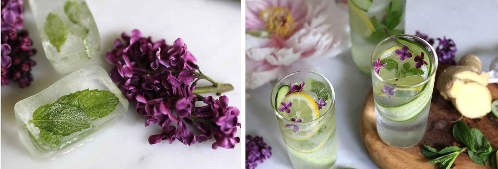 Capture fresh mint into ice cubes, and add a few flowers from a lilac plant to make this refreshing cucumber-infused summer cocktail look beautiful.  Serve it for happy hour in the garden, or make an alcohol free version to sip all day long.  Treat yourself right!
