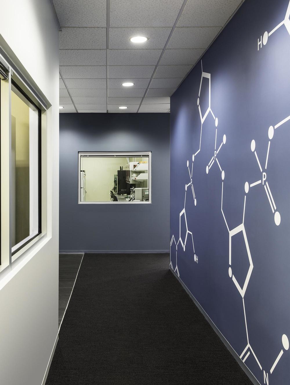 Hallway v1.jpg