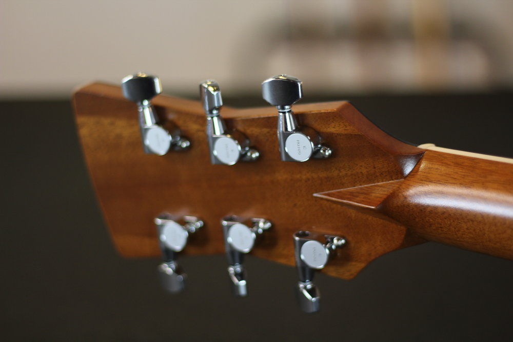 Goldtop - Signature Model (11).JPG