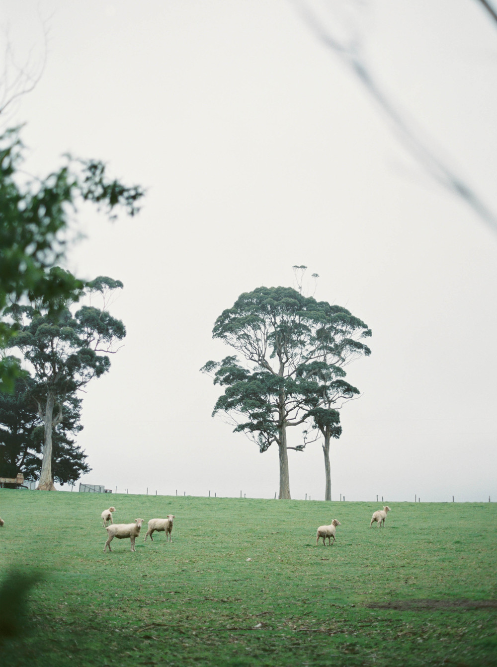 Katie Grant Photography (47 of 64).jpg