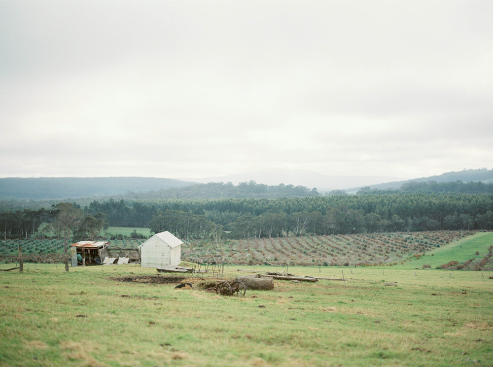 Katie Grant Photography (56 of 64).jpg