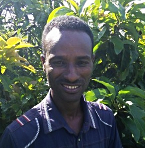 Getu Kebede is the head of household for a family of 7. Four of the family members contribute to farming activities. He owns 25 avocado trees, all of which are GreenPath preferred varieties. Some of his trees have already started fruiting. He has been one of GreenPath's top Partner Farmers in adopting and implementing permaculture on his land!