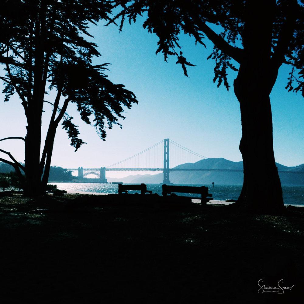 Landscape-23.jpg