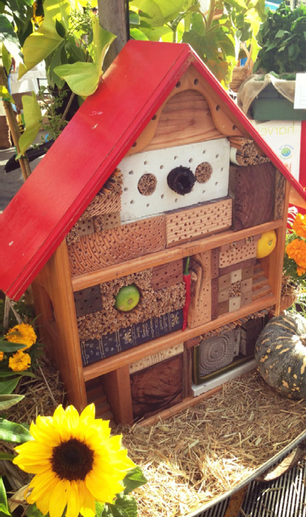 Get creative with native bee shelters