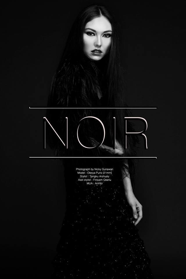 noir cover.jpg