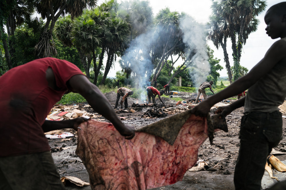 Young men char and process cow parts over open fires in order to sell them in the markets of Garoua, Cameroon. A number of the workers admitted to having taken the drug in the past to help with their job's long, physically taxing work.