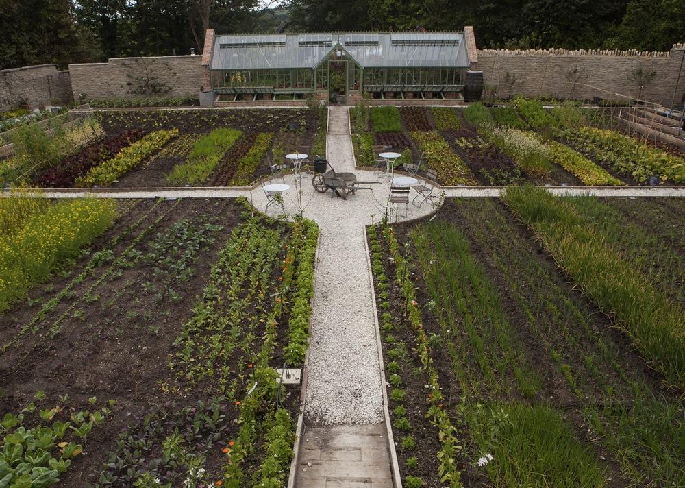 Down_in_the_Kitchen_Garden.jpg