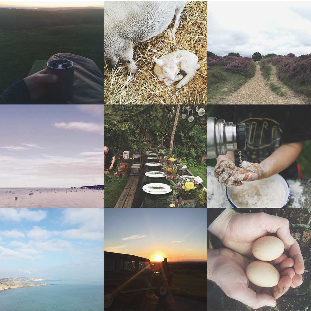 sleeping out under the stars, lambing live, exploring our patch of wild, a sumemr foraged feast, fresh eggs from our happy hens, beach school bread making brigade
