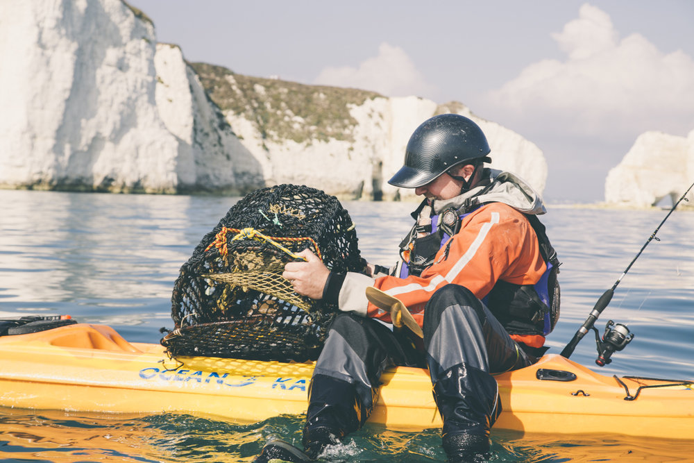 Kayak foraging adventures in dorset