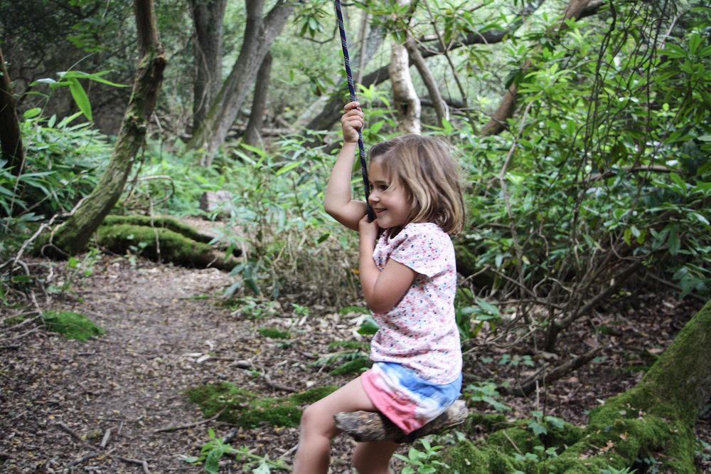 country park rope swing