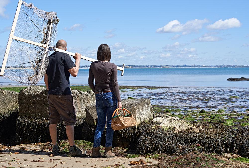 coastal foraging foreadventure