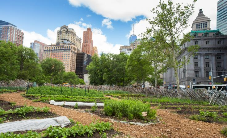 Battery Urban Farm gardening project in New York City is a one acre farm that is the largest educational farm in Manhattan.