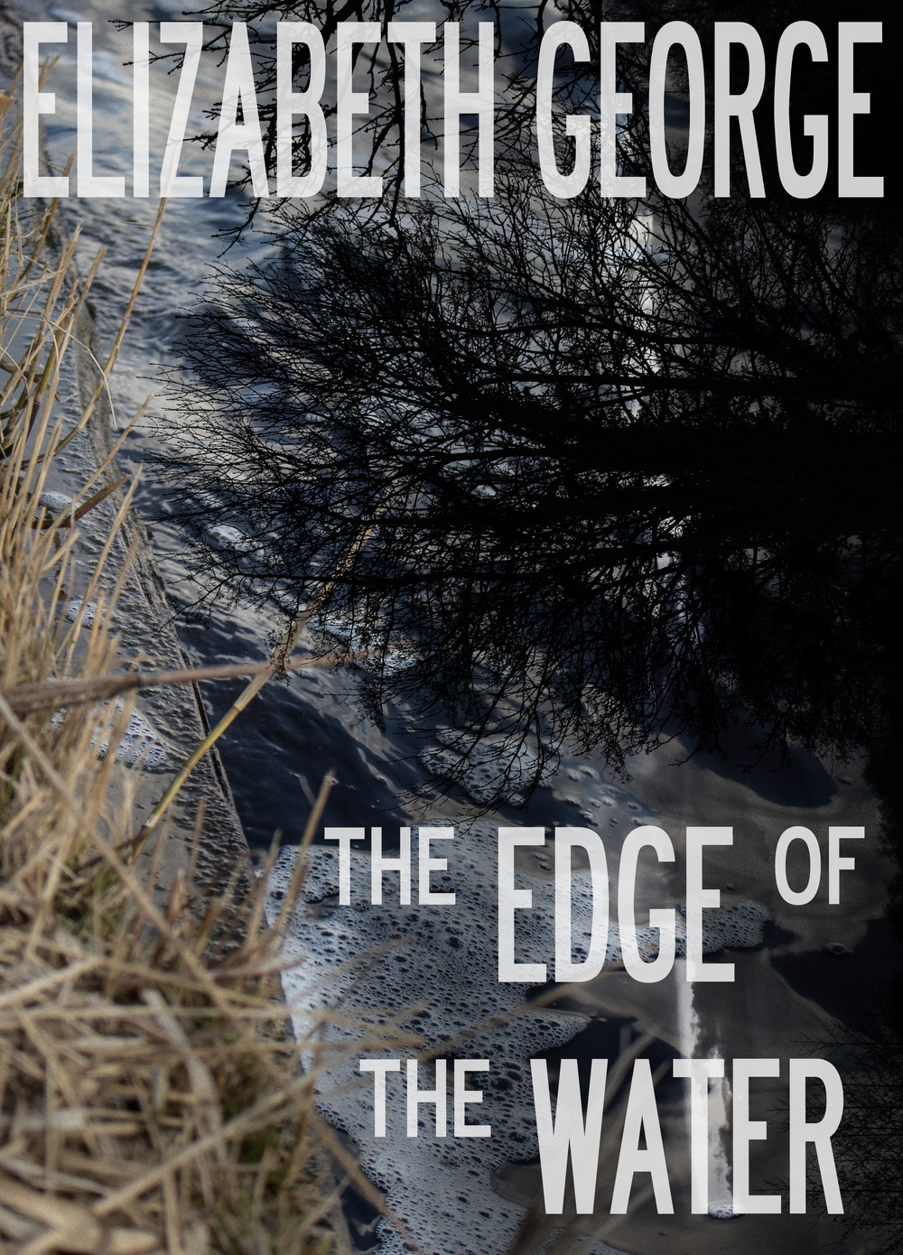 the edge of the water cover by dorens.jpg