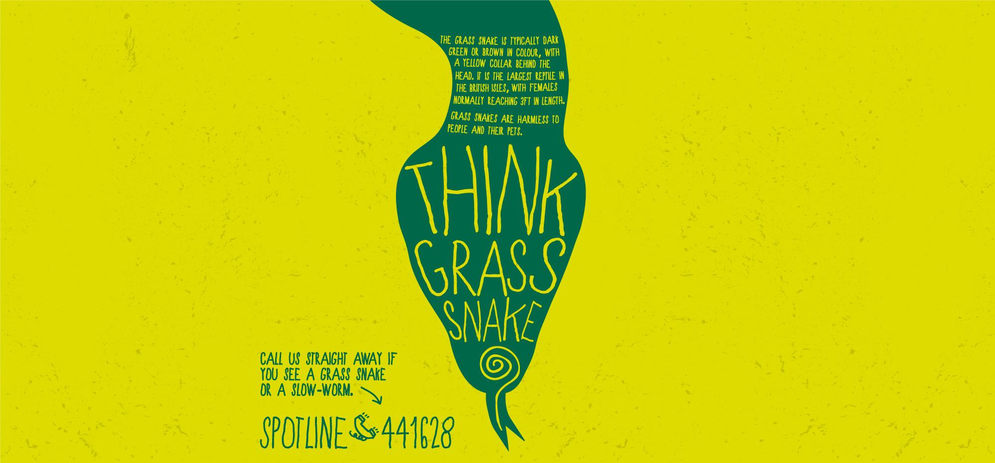 think grass snake