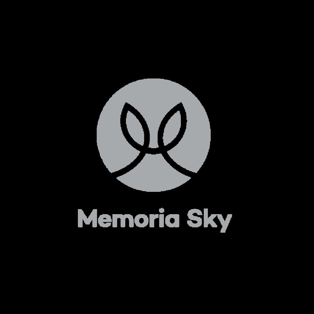 Memoria Sky_grey.png