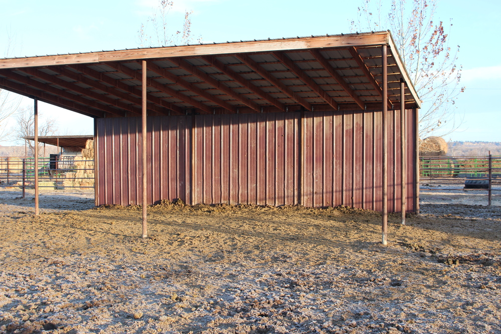 typical shelter in large pens