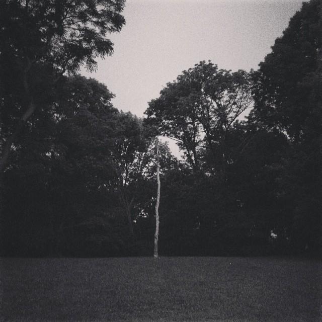 2014-07-09_1404946538.jpg