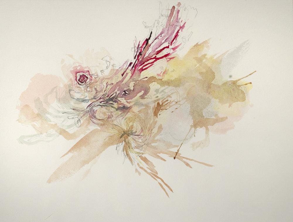 Whirlwind #2