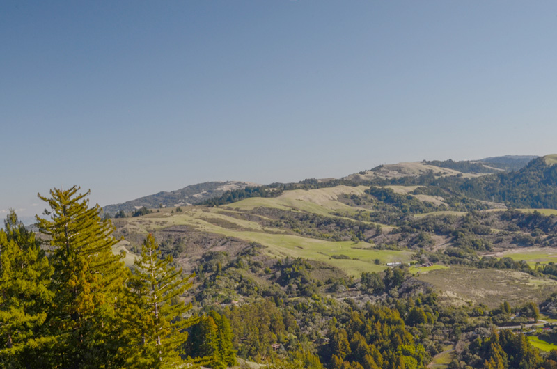 Grassy hills, brushy slopes, and forests are all present in La Honda Open Space Preserve, Santa Cruz Mountains
